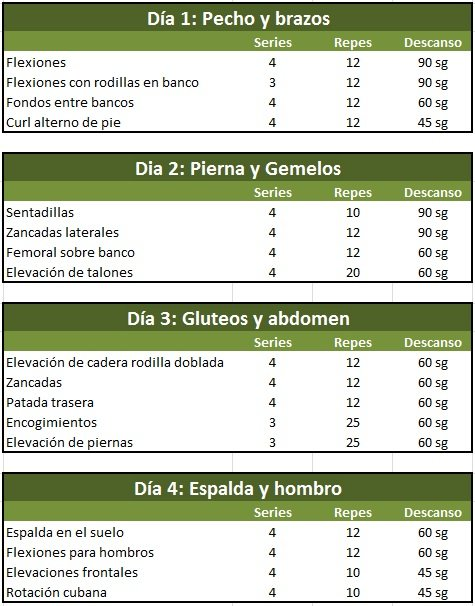 Cosmeticos para hombre y mujer tu cuerpo para el verano for Gimnasio 60 y 15