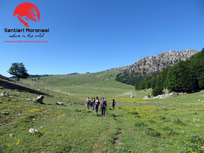 La wilderness del Pollino