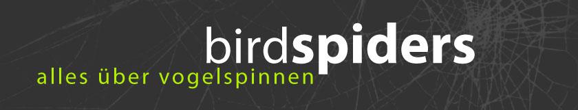 Birdspiders: Alles über Vogelspinnen
