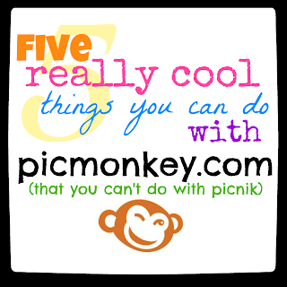cool+things+about+picmonkey.png