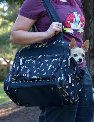 Best in Show backpack dog carrier