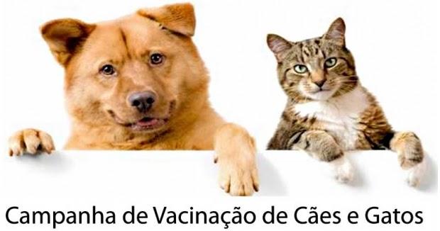 ... de Vacina