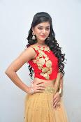 yamini bhaskar latest glam pics-thumbnail-15