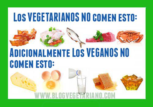 Eat veggie miss greyhound for Do vegetarians eat fish