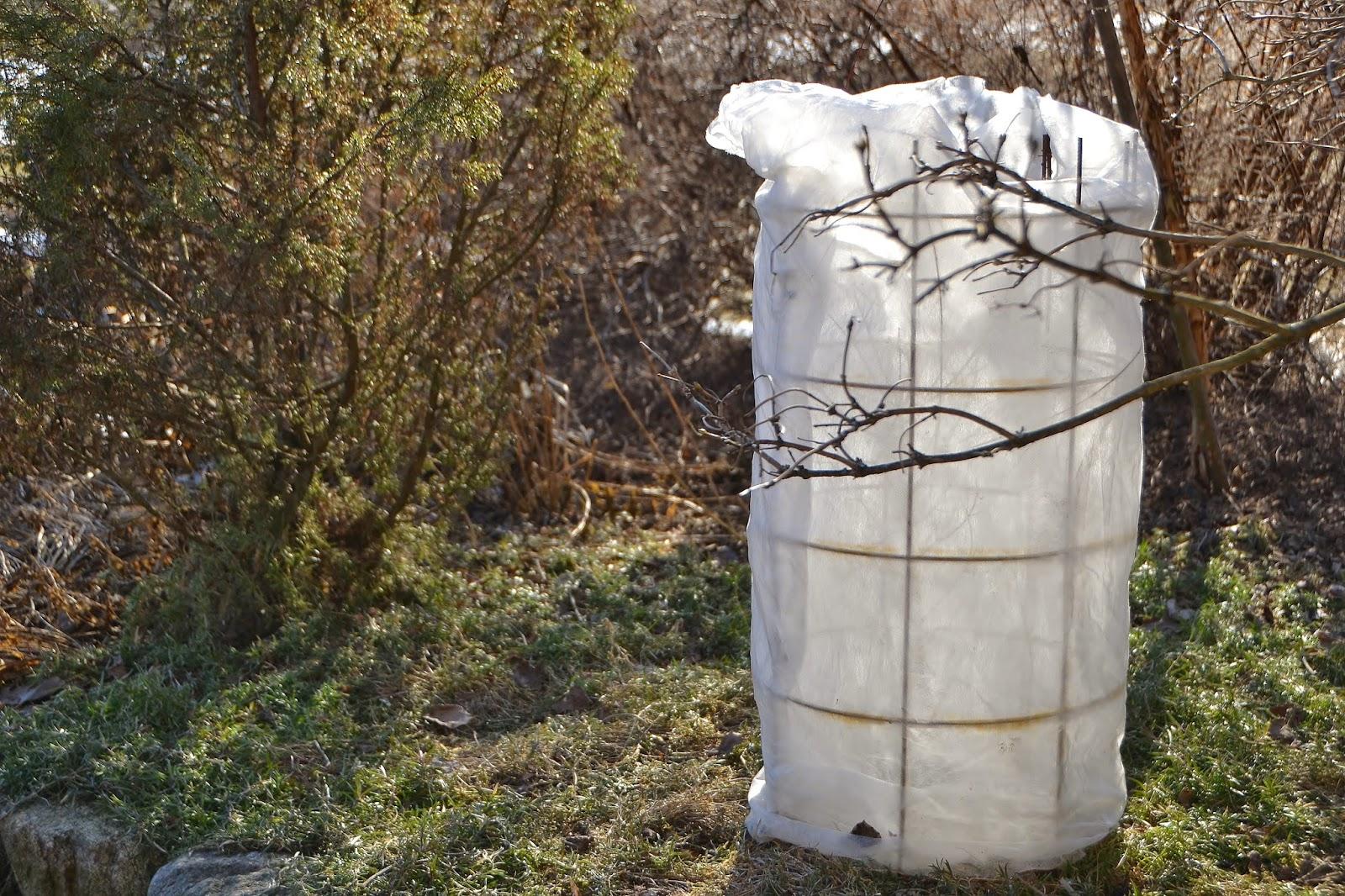 talvisuojaus,betoniverkko