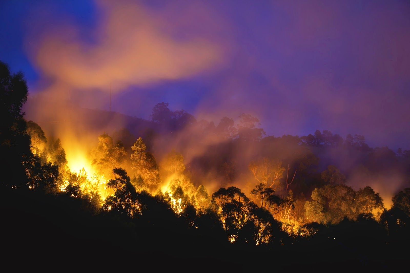 Smoky wildfire at night