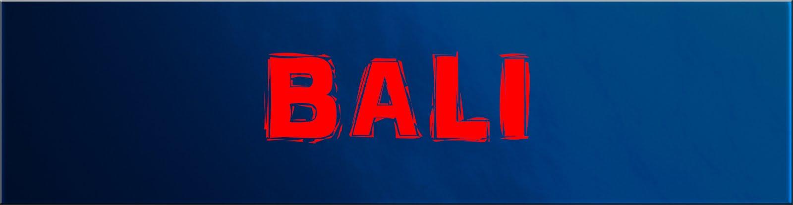 BALI 14