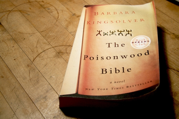 essay questions for the poisonwood bible