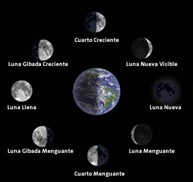 escoge la fase lunar adecuada para tu ritual tilia 39 s blog