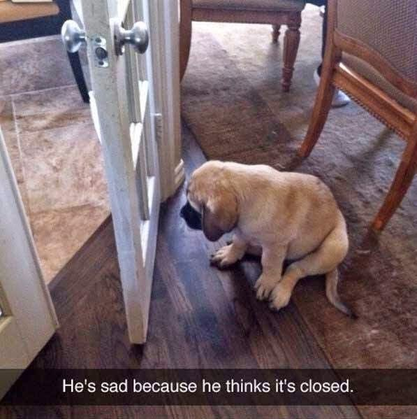 he's sad because he thinks it's closed