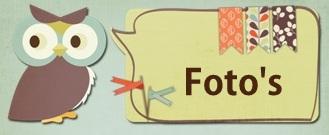 Fotolink