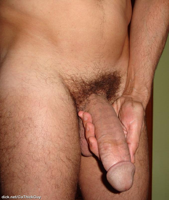 Porno Gay Vergas Grandes Y Venosas