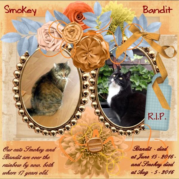 Sept. 2016 - Bandit & Smokey