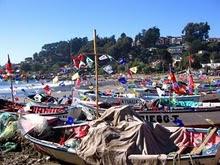 Botes Para Fiesta de San Pedro