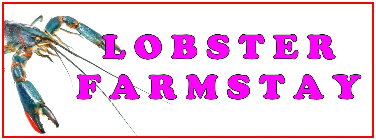 LOBSTER FARMSTAY