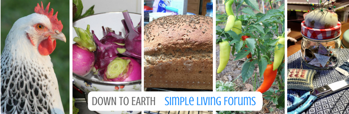 DOWN TO EARTH SIMPLE LIVING FORUMS