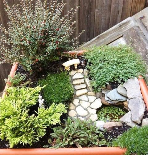 mini jardim terrario : mini jardim terrario:Quando decoramos nossa casa, nos focamos em deixar cada cantinho dela