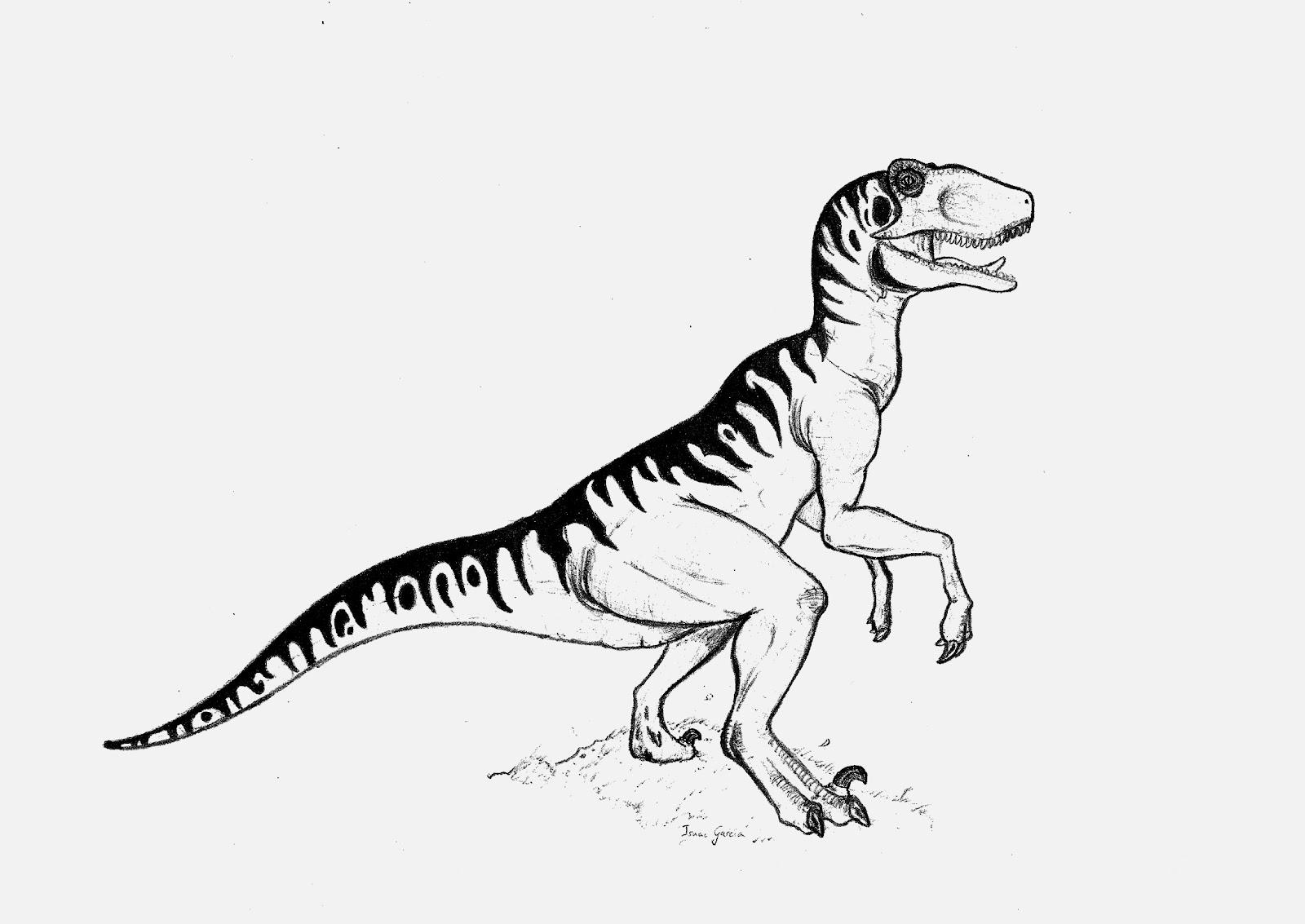 Famoso Dibujo De Velociraptor Para Colorear Ilustración - Enmarcado ...