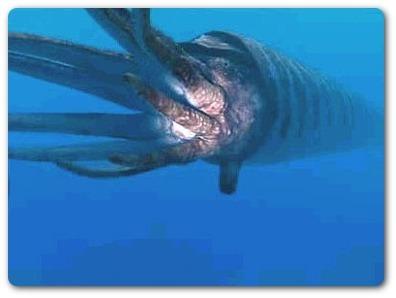Los depredadores más temibles de la historia Orthoceras+(Ortocono)