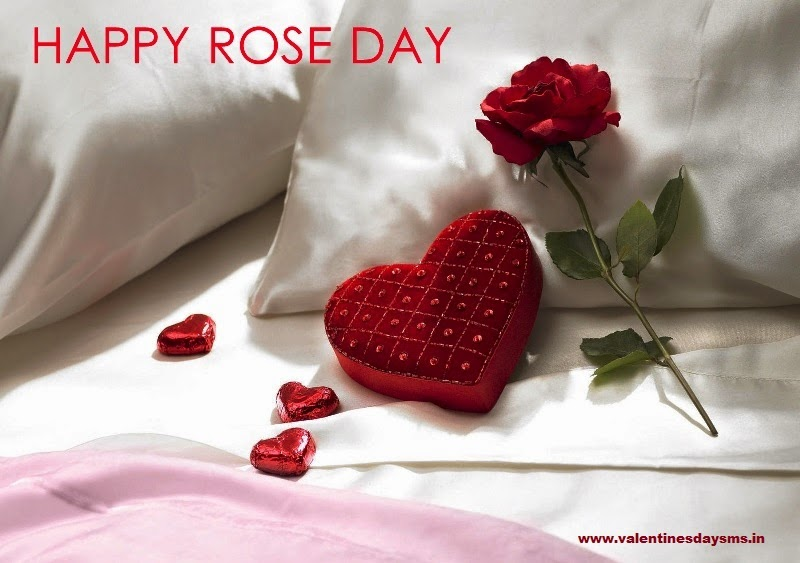 rose day wishes 2015
