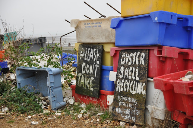 Whitstable Oyster Shell Recycling point