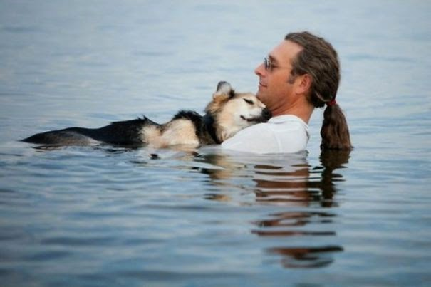 20+ Photos That Will Restore Your Faith In Humanity - Every Evening, This Man Takes His Sick Dog To A Lake Because The Water Helps His Pain Subside