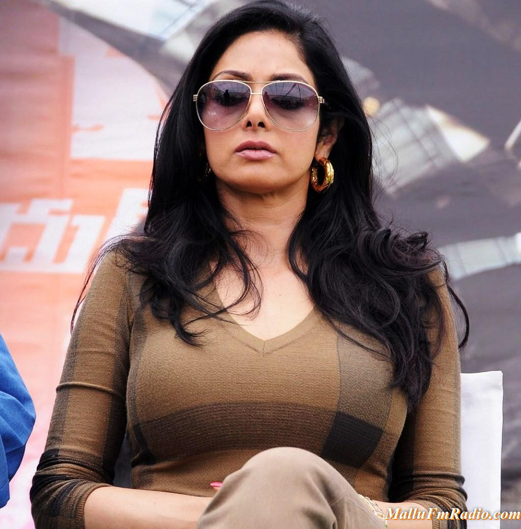 Sridevi Photo Gallery ~ Actress Clicks