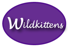Visit my WildKittens Etsy shop: