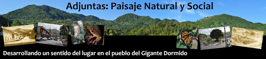 Adjuntas: Paisaje Natural y Social