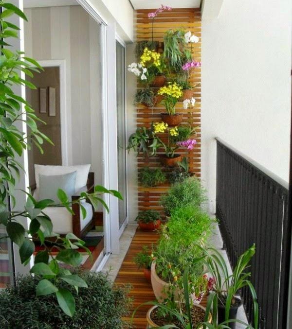 decorar con orquídeas - guia de jardin. aprende a cuidar tu jardín.