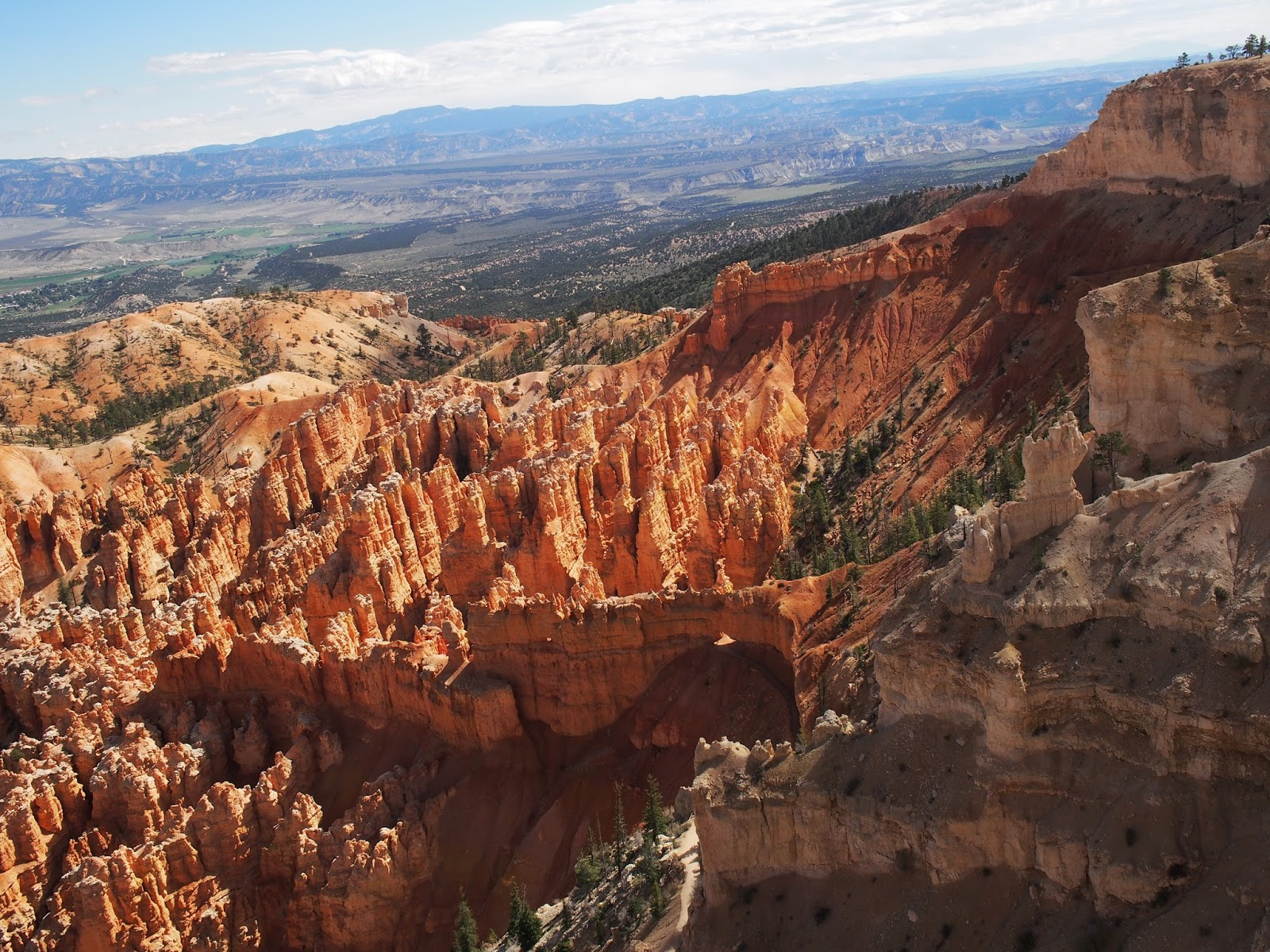 Also a View from Bryce Point, #BrycePoint #Bryce Canyon #utah #hoodoos 2014