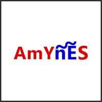 Amynesblogspot ☒