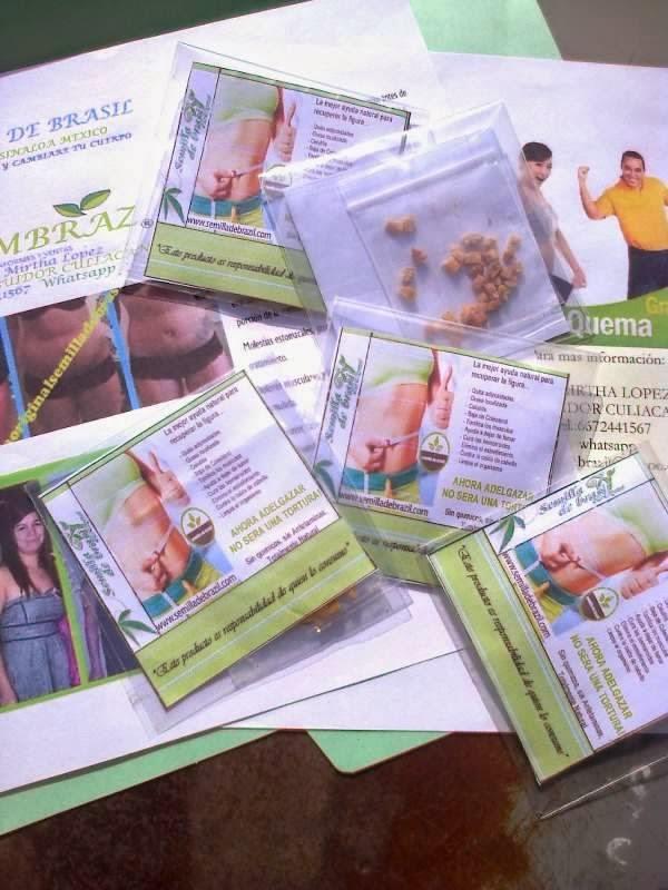 Semilla de brasil adelgazante 100 natural blog de Semilla de brasil es toxica