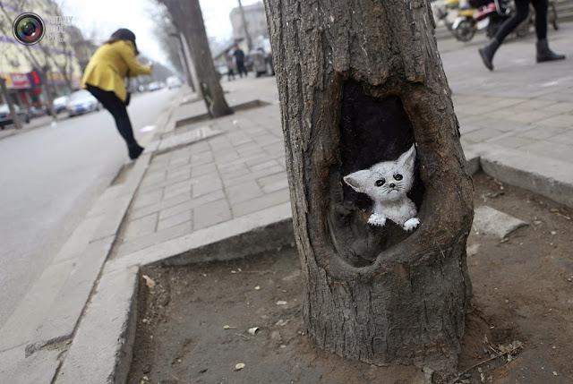 Нарисованный кот на дереве в Шицзячжуане, Китай. (Pillar Lee/REUTERS)