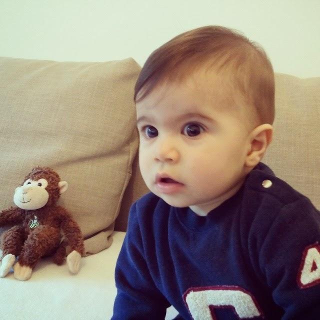 Manel de instru es os 9 meses dos beb s e os 9 meses do manel - Bebe de 9 meses ...