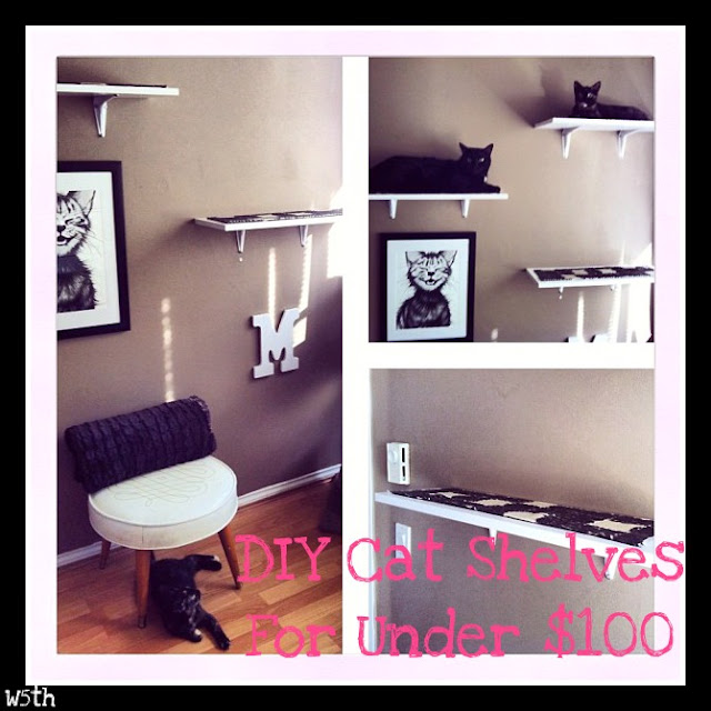 DIY Cat Shelves For Under $100 Series Part 3