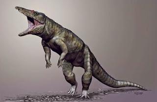 Buaya Berkaki Dua Hidup Sebelum Dinosaurus