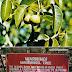 7 Pokok Paling Berbahaya di Muka Bumi