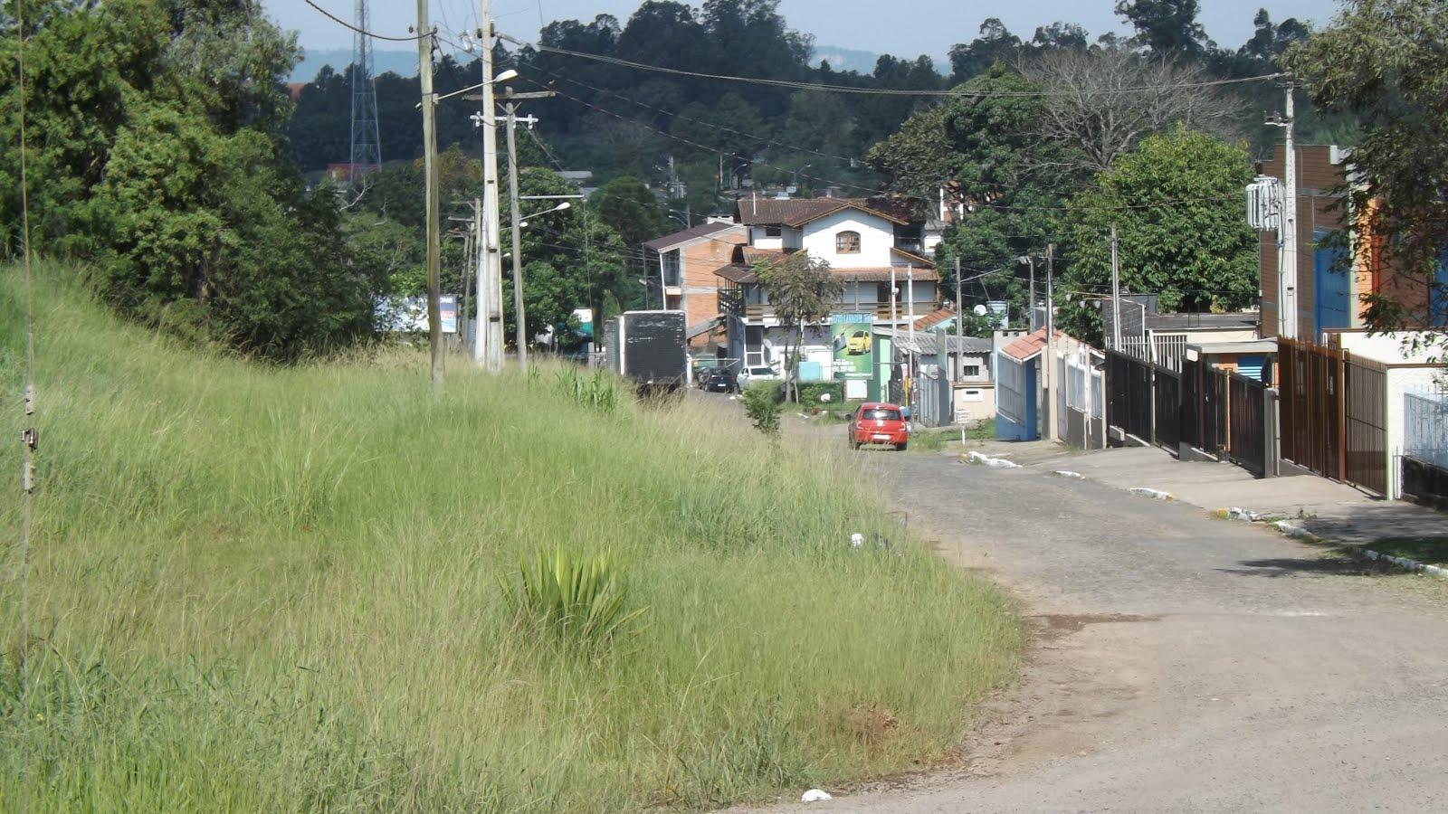 VEREADOR PEDE LIMPEZA NO RIO BRANCO