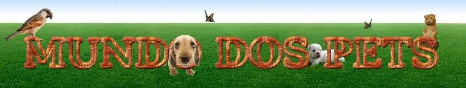 Mundo dos Pets - Cachorros, gatos e outros pets