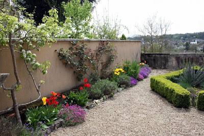 Garden in springtime, blossom, tulips, aubretia