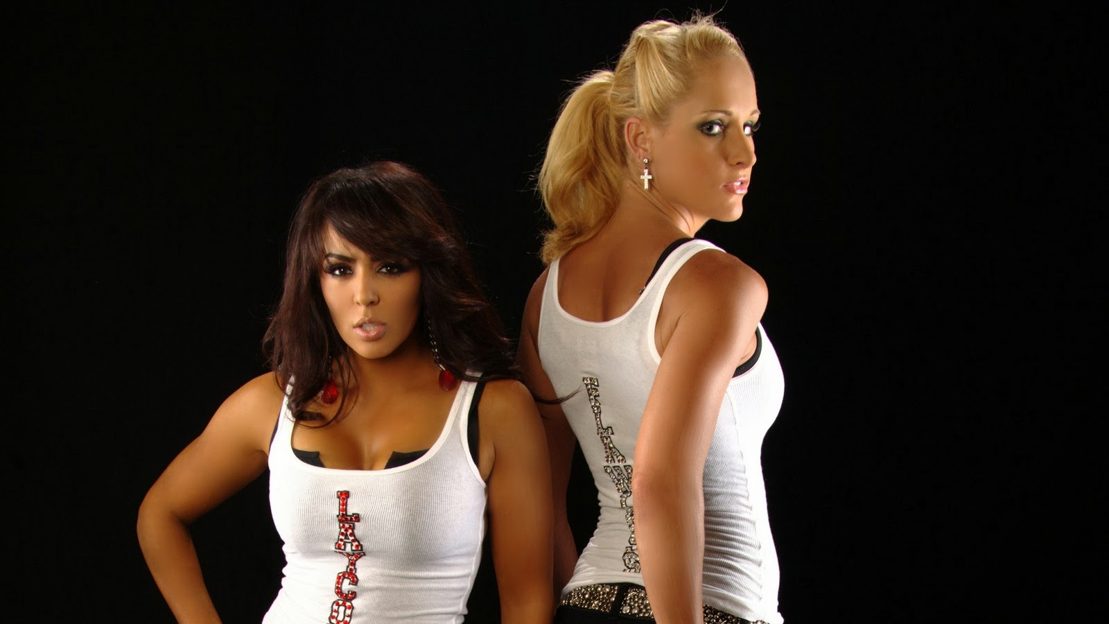 Hot Divas WWE HD Wallpaper   HD Wallpapers  High Quality