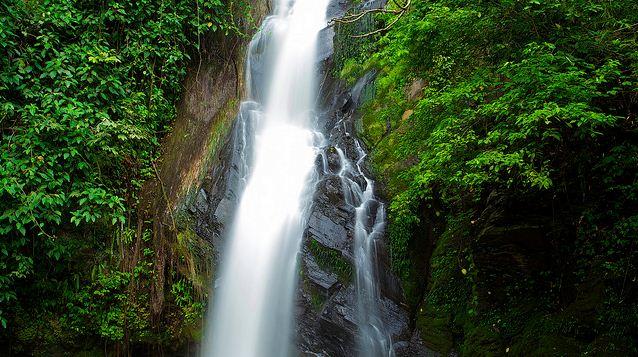 © http://www.flickr.com/photos/wandihardian/5341405461/