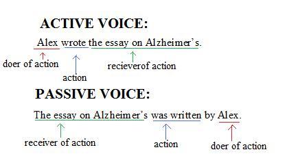 essays on passive voice