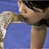 Βίντεο-σοκ: Φιλάει στο στόμα μια βασιλική κόμπρα! [video]