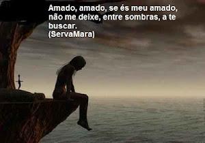 AMADO, AMADO!