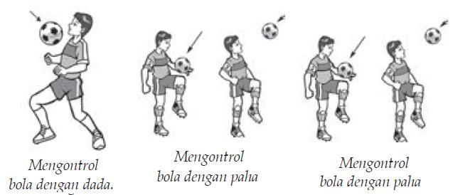 Teknik Mengontrol Bola Dengan dada