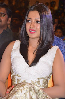 Actress Catherine Tresa Picture Gallery at Kanithan Movie Audio Launch  25287.jpg