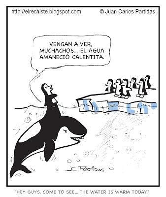 chiste de orca y pinguinos