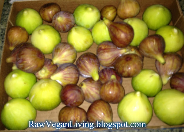 figs - mission and totato figs